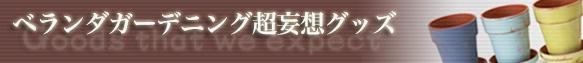 VG超妄想グッズ